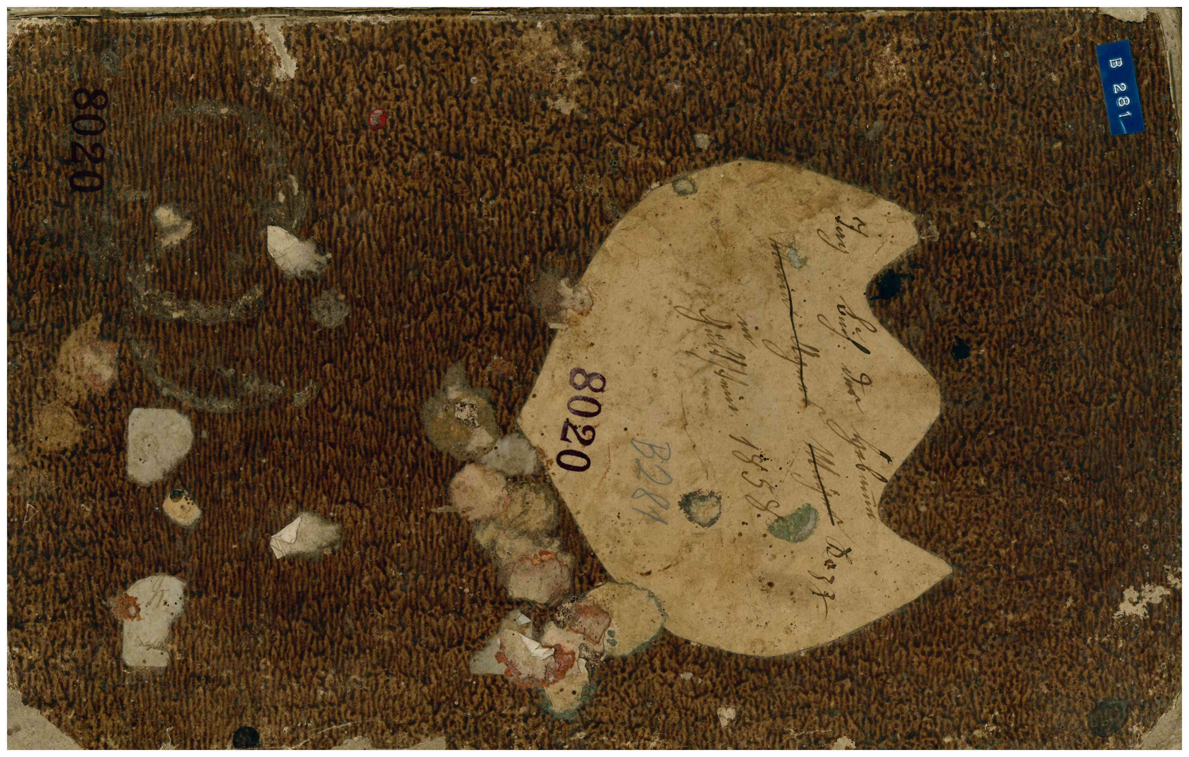 Hebammenbuch Umschlag