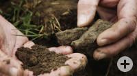 Boden Erbe