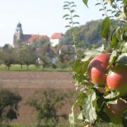 Streuobsterlebnis in Herrenberg