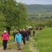 Wandern in Herrenberg