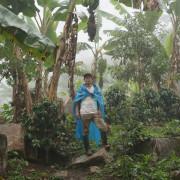 Ein Farmer auf einer Kaffeeplantage