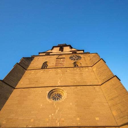 Die Stiftskirche prägt das Herrenberger Stadtbild