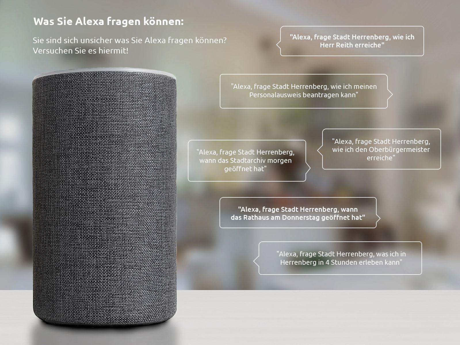 Beispielfragen für den Alexa-Skill