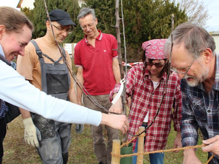 Gemeinschaftliche Pflanzaktion in der Schwarzwaldsiedlung