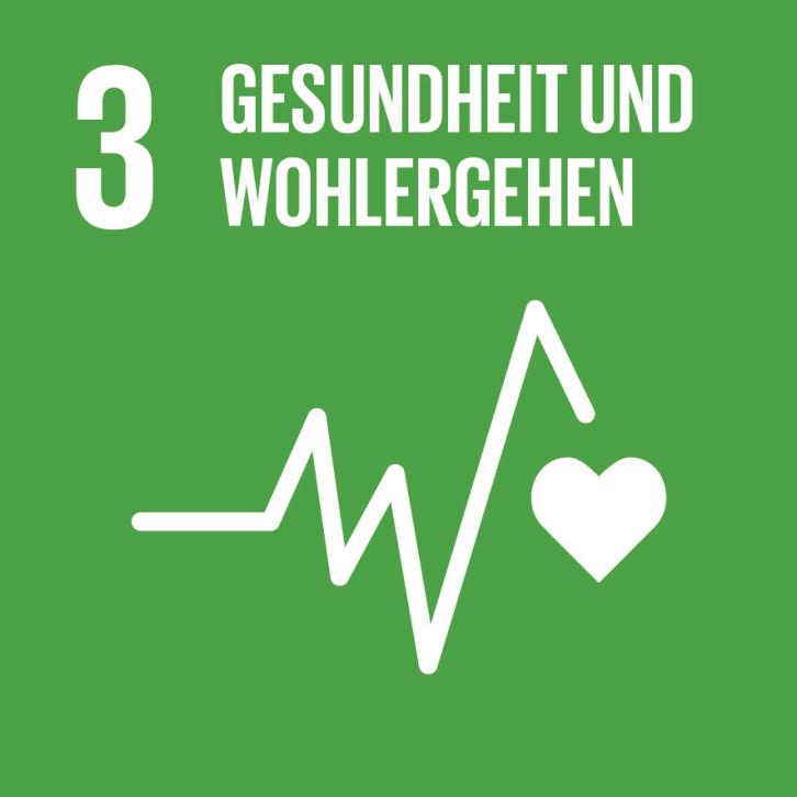 SDG-icon-DE