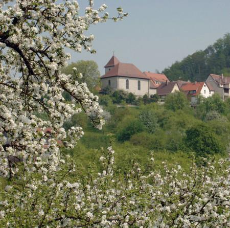 Herrenberg-Mönchberg / Blick aus den Streuobstwiesen unterhalb des Ortes auf Obermönchberg und Schönbuch / Foto: Gabriel Holom